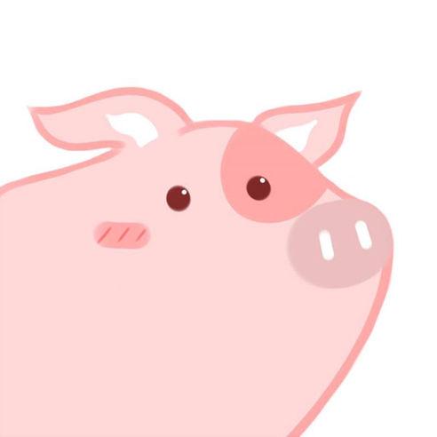 途猪(旅游购物)官方版下载v1.0