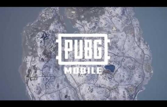 pubg mobile外服安卓下载v0.10.0截图5