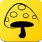 蘑菇丁安卓版下载v3.0.6