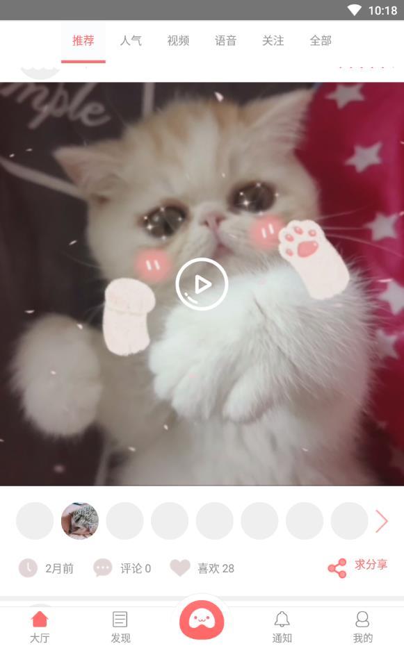 宠物推荐手机版下载v2.4.5截图1