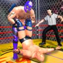 摔跤狂热中文街机版手游下载v2.2