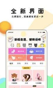 激萌猫咪桌面宠物微信专享版下载v3.0.3截图4