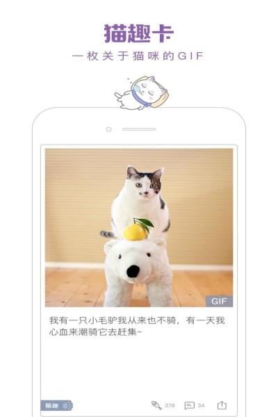 一日猫安卓最新版下载截图0