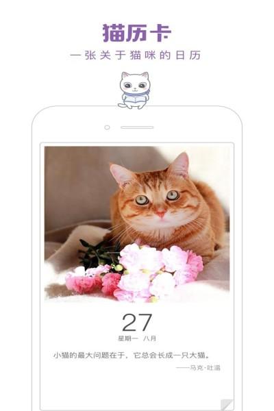 一日猫安卓最新版下载截图2