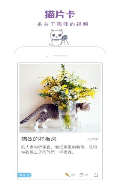 一日猫安卓最新版下载截图4