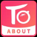 番茄约会官方安卓版app下载