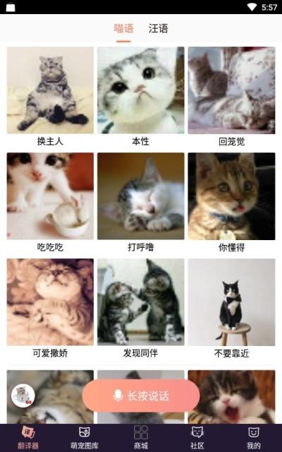 猫语互译软件免费版下载截图1