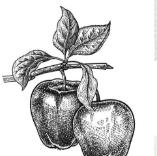 素描图片生成器免费版下载v1.0.1