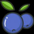 蓝莓美颜照片还原素颜官方软件v1.0 安卓版