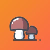 小蘑菇打字兼职v1.0 最新版