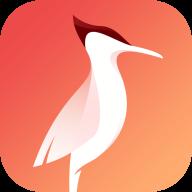 啄木鸟快讯红包版v1.0