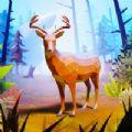 爱护动物之王游戏下载v1.0